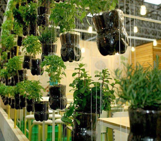 Ems, Horticultura and Jardins suspensos on Pinterest
