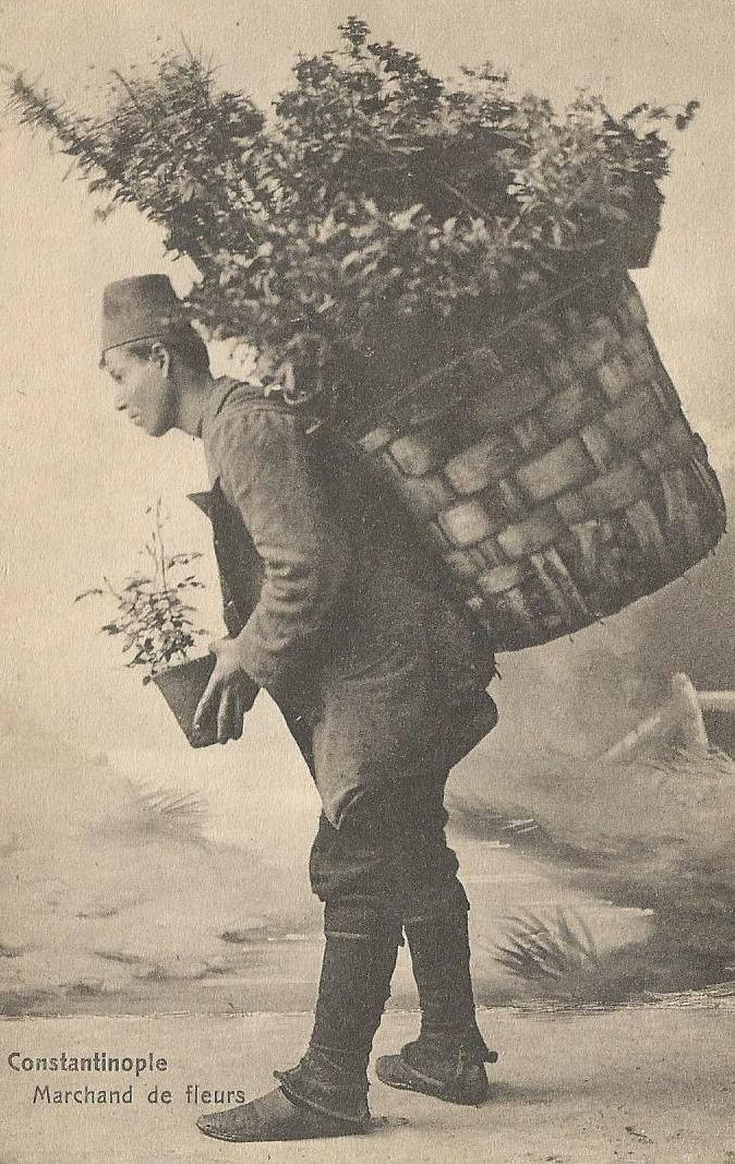 ÇÍCEK SATICISI (seller of flowers). Istanbul, ca. 1900.