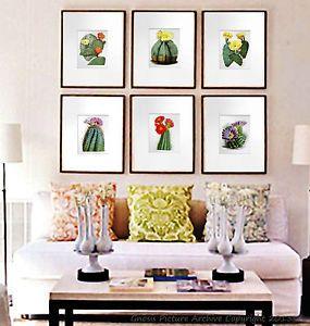Vintage Botanical Art Set of 6 Prints Flowering Cactus Southwestern Wall Decor   eBay