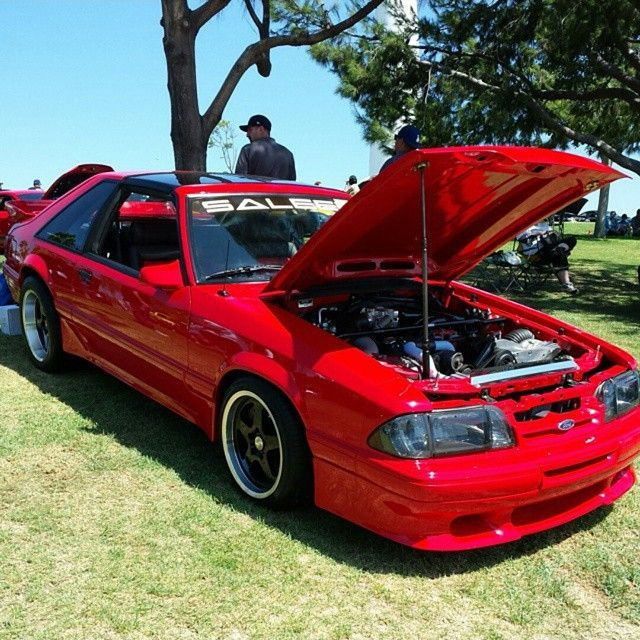 Ford Mustang Supercharged South Africa: Instagram Media By Foxbodynation