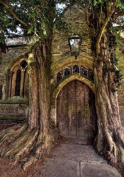 Wooden Door of St Edwards church with two ancient yew trees, Stow-on-the-Wold, Cotswolds…