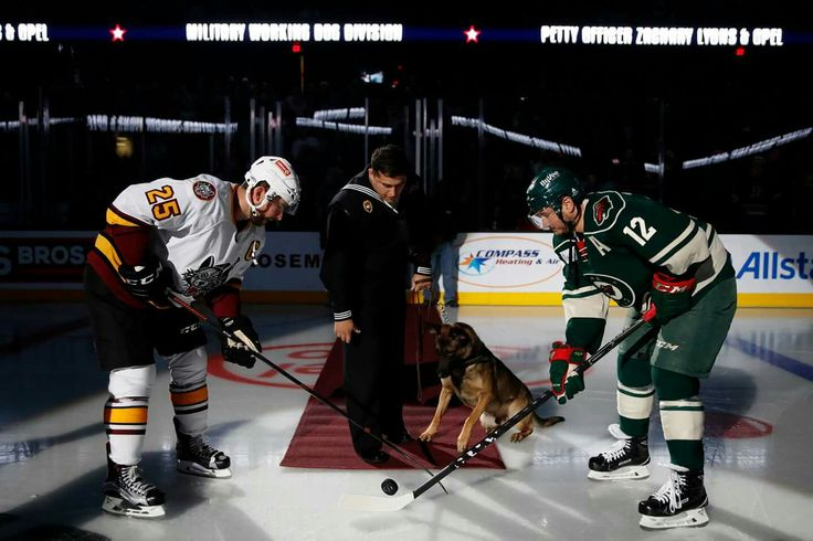 Hometown Hero dropping the puck, at the Chicago Wolves game in Allstate Arena- Rosemont, IL.