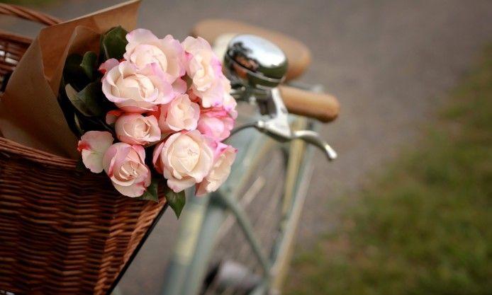 pink roses, flowers, basket, classic bike, focus, photo, wallpaper