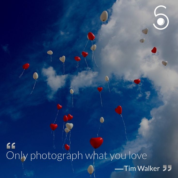 ❝Only photography what you love❞ -Tim Walker