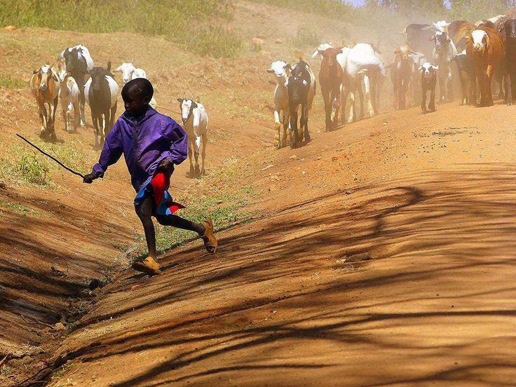 Massai, Kenia