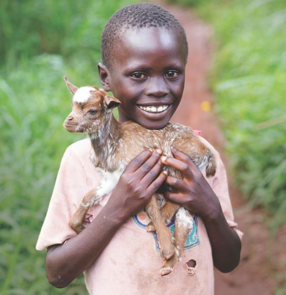 Got #goat? Thanks to your contributions and love, this #child does. A gift of goats means a family can have milk, which they can both consume and sell to earn money for other necessities. This means families become more self-sufficient, which leads to healthier children. What a blessing! 🙌🏿🐐🎁 This #Christmas, give the #gift of a goat or something else for a child in need. Link to our gift catalog is in the bio.
