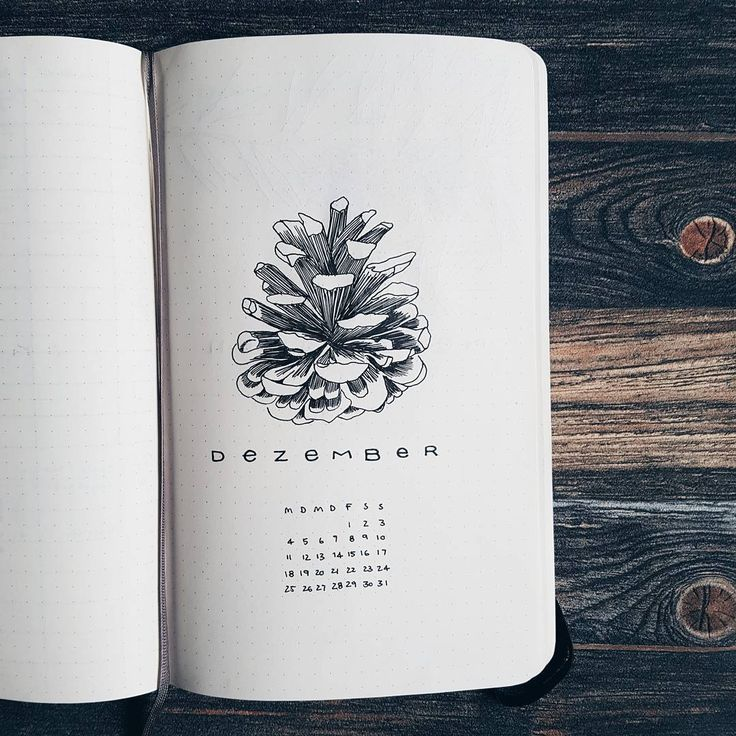 Bullet journal monthly cover page, December cover page, Winter drawings, pinecone drawing. @frau_kleinkariert