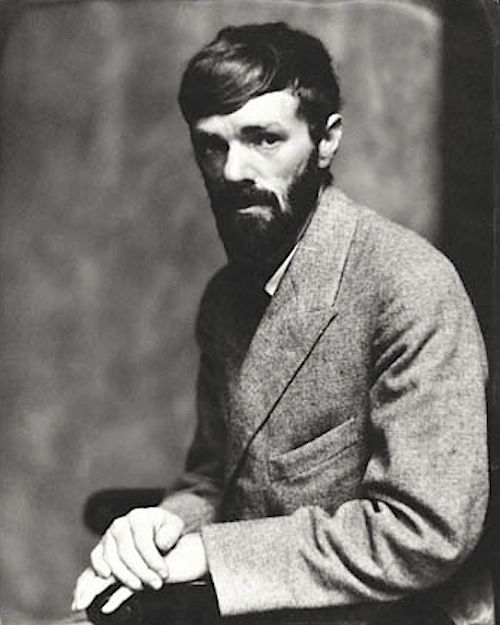 """""""This is what I believe: That I am I. That my soul is a dark forest. That my known self will never be more than a little clearing in the forest[...]""""  D. H. Lawrence"""
