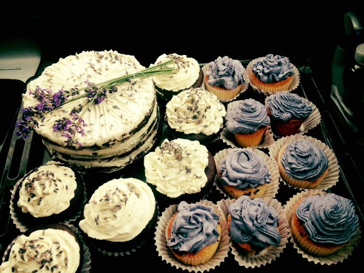 Lavender cake and cup cake