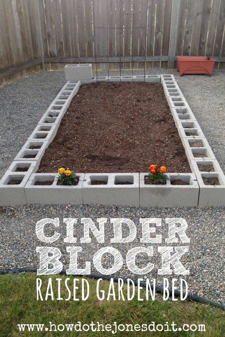 A Cinder Block Raised Garden Bed