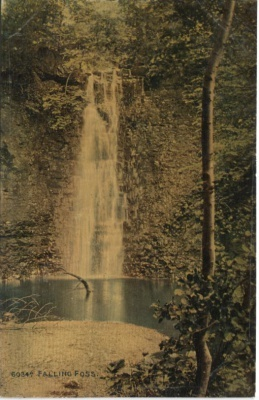 Photochrom Co Ltd Postcard - Celesque Series - 6034A Falling Foss (nr Whitby)