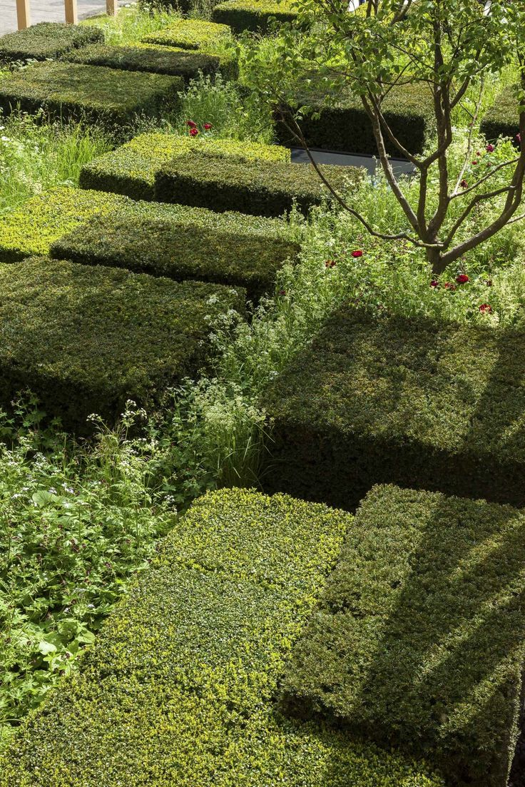 Chelsea Flower Show 2013 - Bradley-Hole Schoenaich Landscape