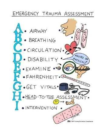 Emergency Trauma Assessment - Student Nurse Study Aides