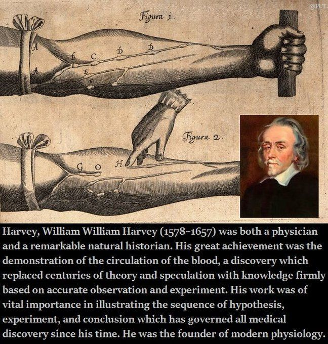 Born 1 April 1578 - William Harvey, famous for discovering circulation of blood.