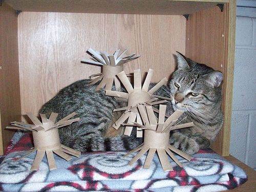 Top 25 Ideas About Cat Toy Crafts Amp Diy Projects On