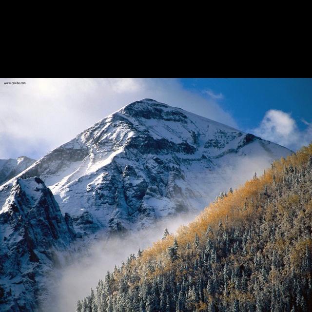 Colorado Rockies Wallpaper: 57 Best Denver Colorado Images On Pinterest