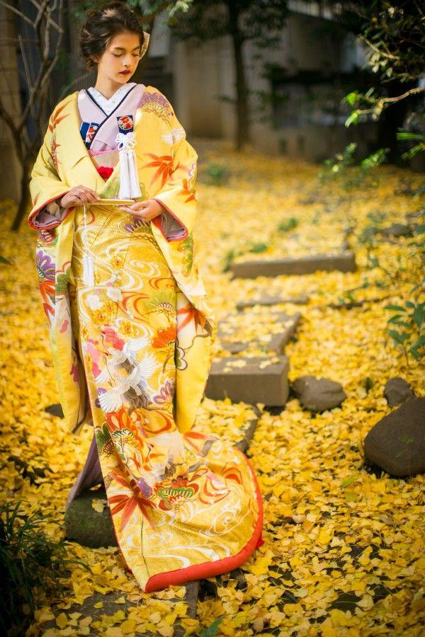 『黄白山吹暈波に松竹梅』黄、白、山吹で暈しを表現した打掛。松竹梅や鶴の柄ゆきが特徴。金駒刺繍や横振り刺繍を用いた本格派。