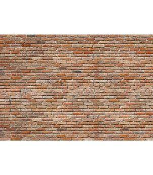 8-741 Backstein - Fototapeta Komar imitace cihlová zeď, velikost 368 x 254 cm