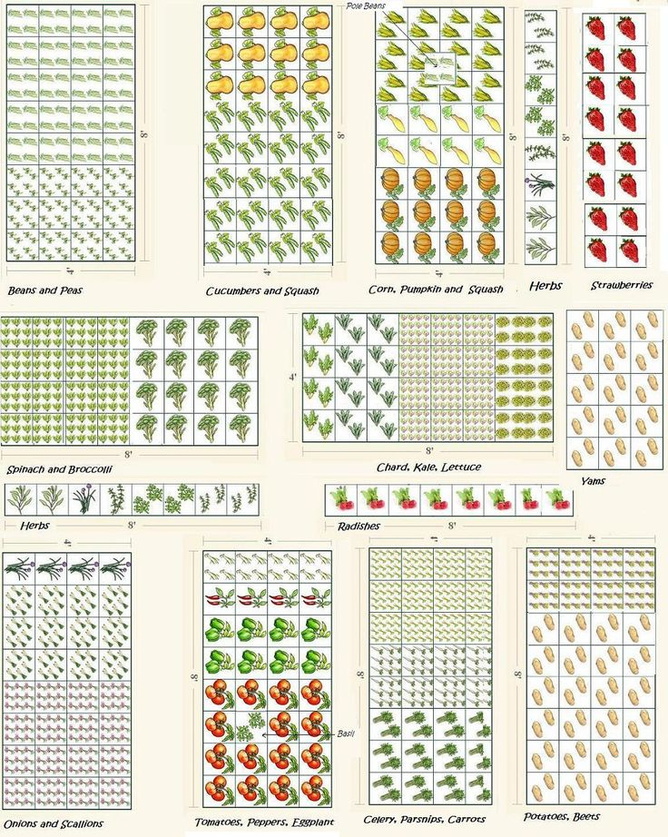 Vegetable garden plans projects to try pinterest for Vegetable garden planner