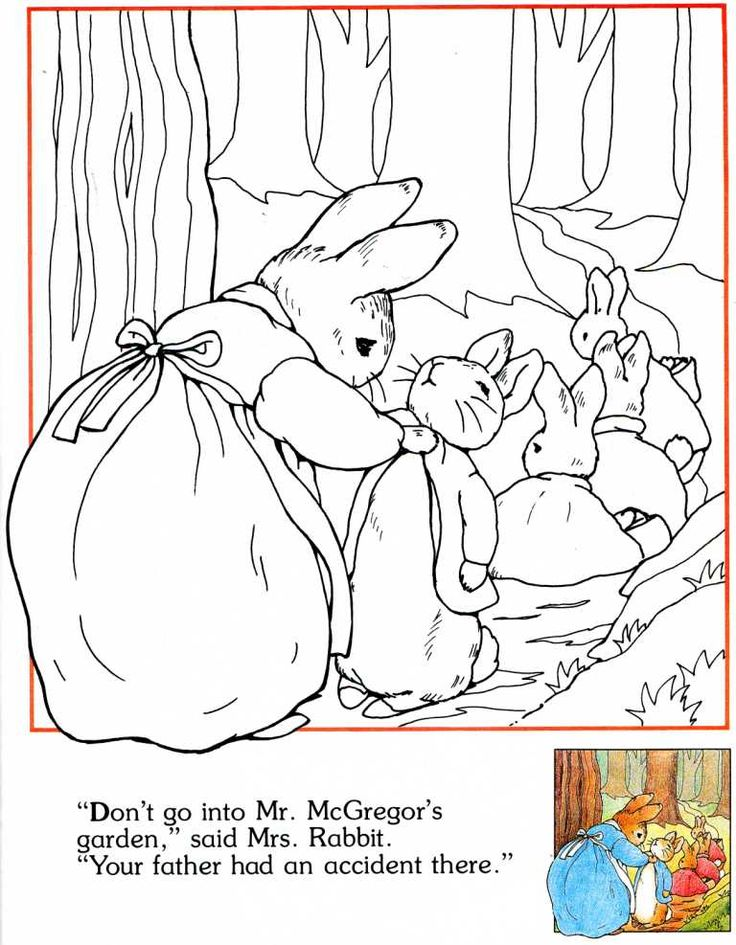 peter rabbit dont go into mr mcgregors garden mrs peter rabbitcoloring pagespeter