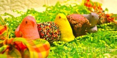 Peep Kebabs! #Easter #dessert #peeps #marshmallow #recipe #sweets # ...
