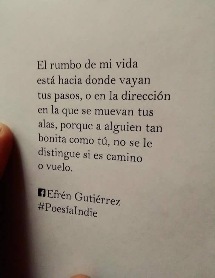 Efrén Gutiérrez Literatura Citas Cartas De Amor