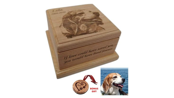 Cremation pet urn for dogs cat ashes pet urn engraved up