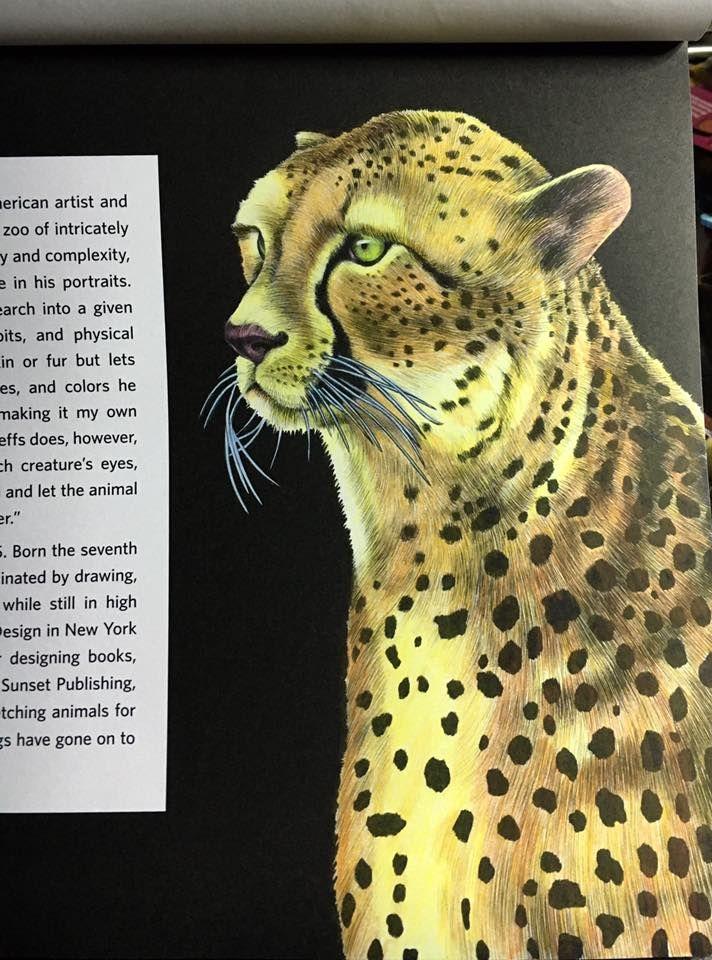 Cheetah By Holly Mcintosh