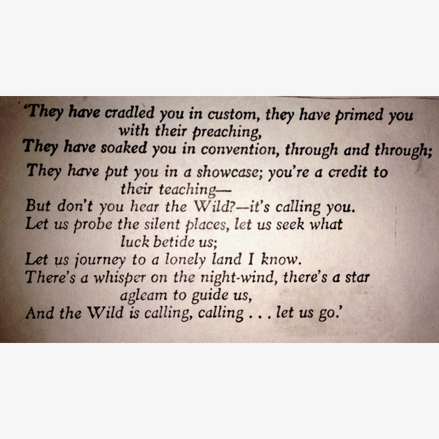 The Warriors Into The Wild Pdf: Call Of The Wild Quotes. QuotesGram