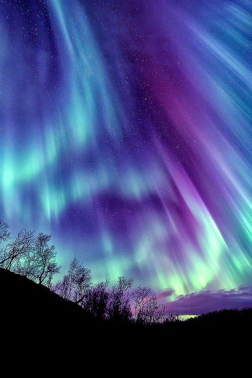 purple aurora borealis wallpapers x - photo #13