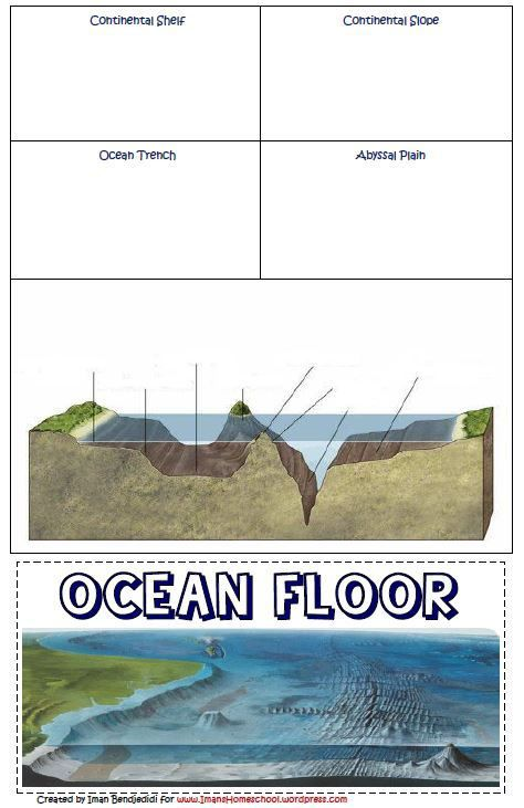 Free Ocean Lapbook or Notebook Page: Features of the Ocean Floor