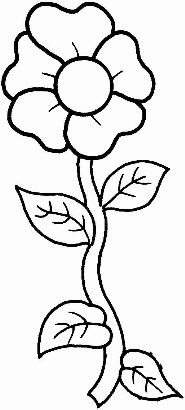 Single Flower Coloring Pages Fresh Printable Photos Of Flowers Basteln Fruhling Fensterdeko Holzarbeiten Handarbeit