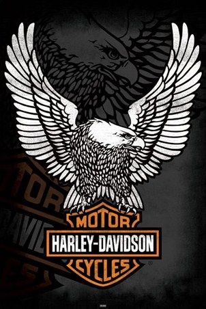 The Harley Davidson Eagle - Harley Davidson