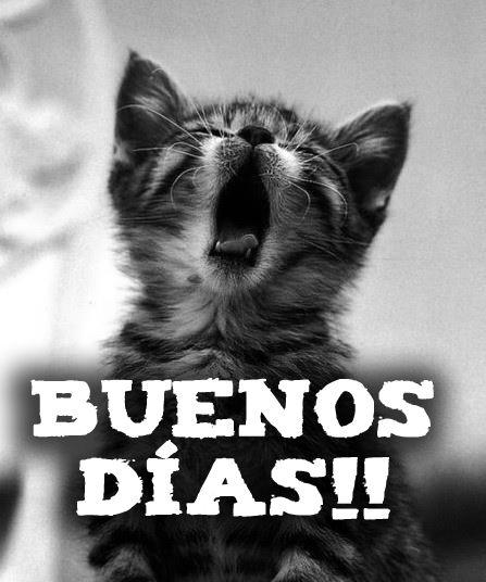 Buenos días mundo!