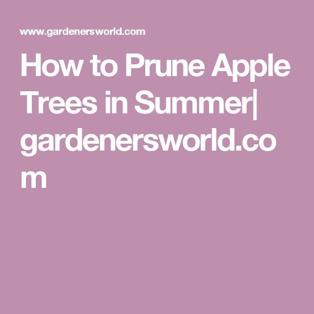 How to Prune Apple Trees in Summer| gardenersworld.com