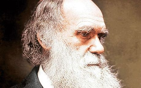 The Vatican claims Darwin's theory of evolution is compatible with Christianity  - Telegraph