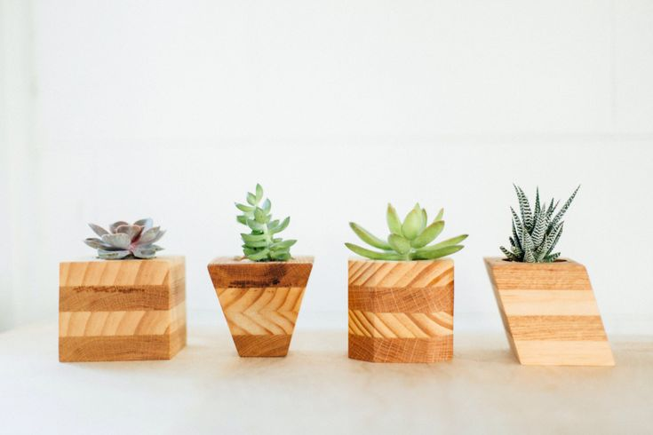 Wood Planters || Geometric Succulent Pots || Modern Cactus Planters || Set of 4 by GoodsFromTheSoul on Etsy (null)