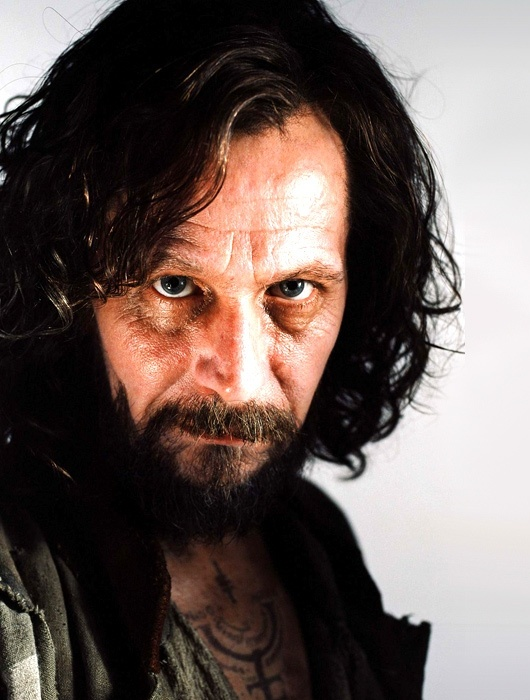 Day 3 Sirius Black is my favorite member of the order of phoenix. I had hoped harry would get to live with him and his name would be cleared. It was so sad when he died