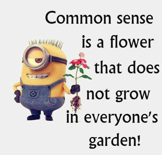 Common sense is a flower that does not grow in everyone 39 s garden minions pinterest common - Minions images with quotes ...