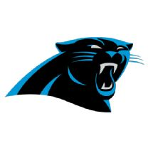 Get a summary of the Miami Dolphins vs. Carolina Panthers football game.