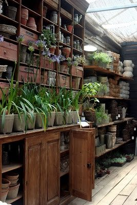 http://indeeddecor.com/potting-shed/
