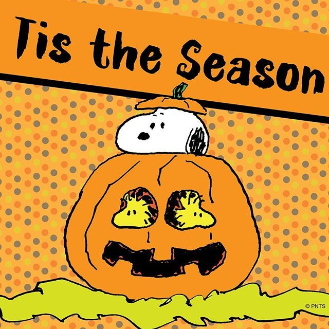 getting in the holiday spirit charlie brown halloweenpeanuts - Charlie Brown Halloween Cartoon
