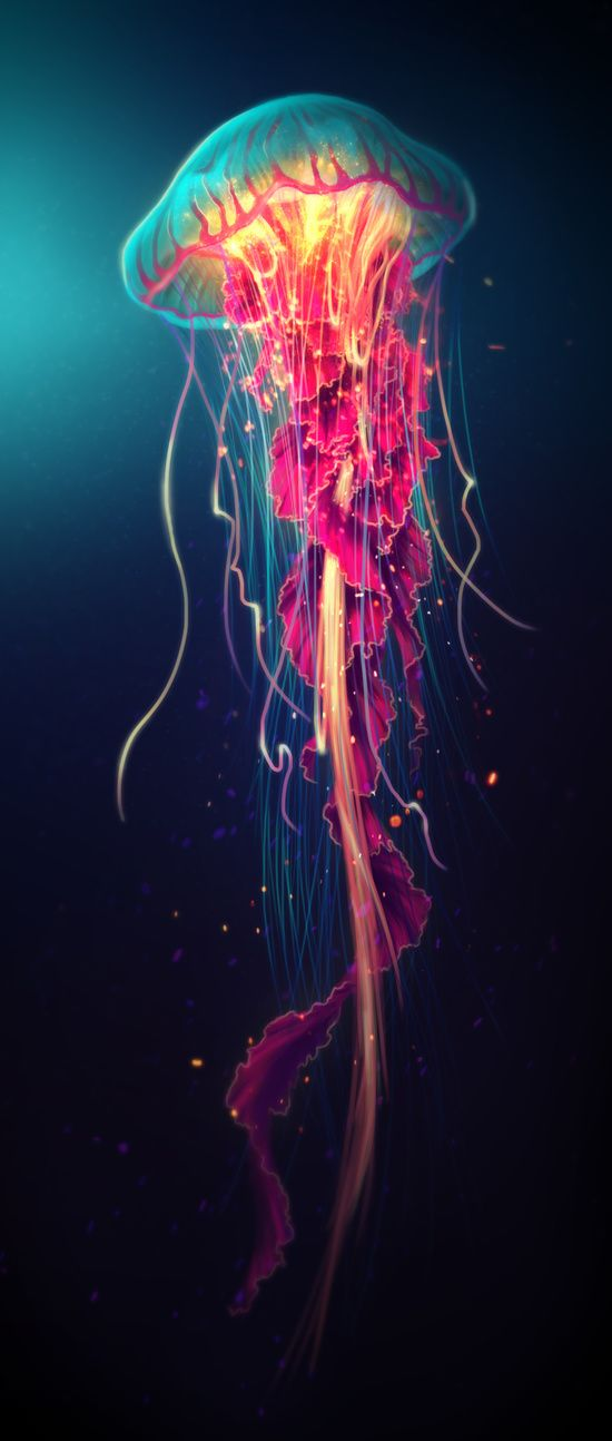 Jellyfish Art Print by Nicole Shobe | Society6