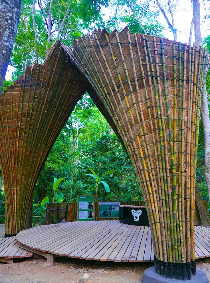 bamboo trees project by building trust and atelierCOLE