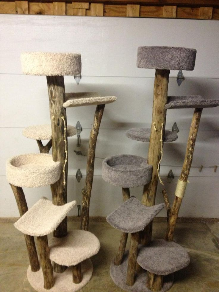 Cat Tree With Natural Wood