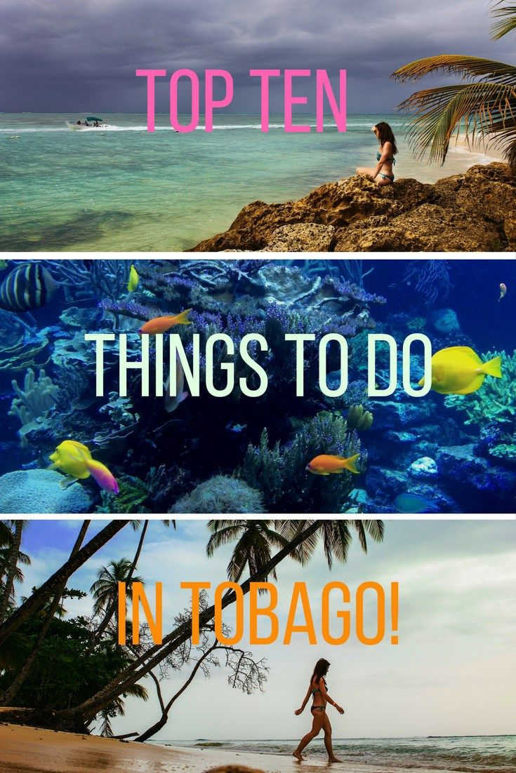 Top Ten Things to Do in Caribbean island Tobago