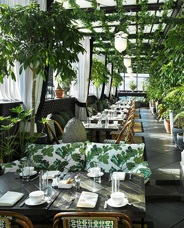 Green Cafe Design: 25+ Best Ideas About Greenhouse Restaurant On Pinterest