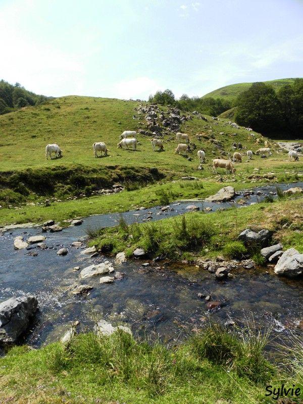 Pays Basque / Pyrénées
