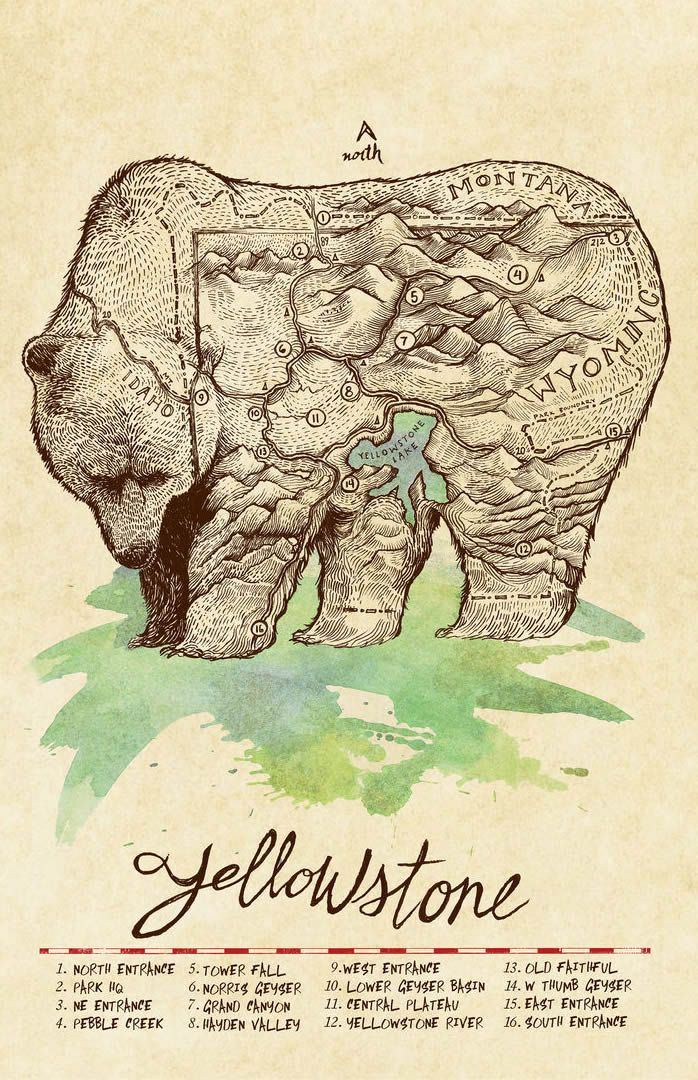 Map of Yellowstone Park drawn as a bear, by Jeremy Collins