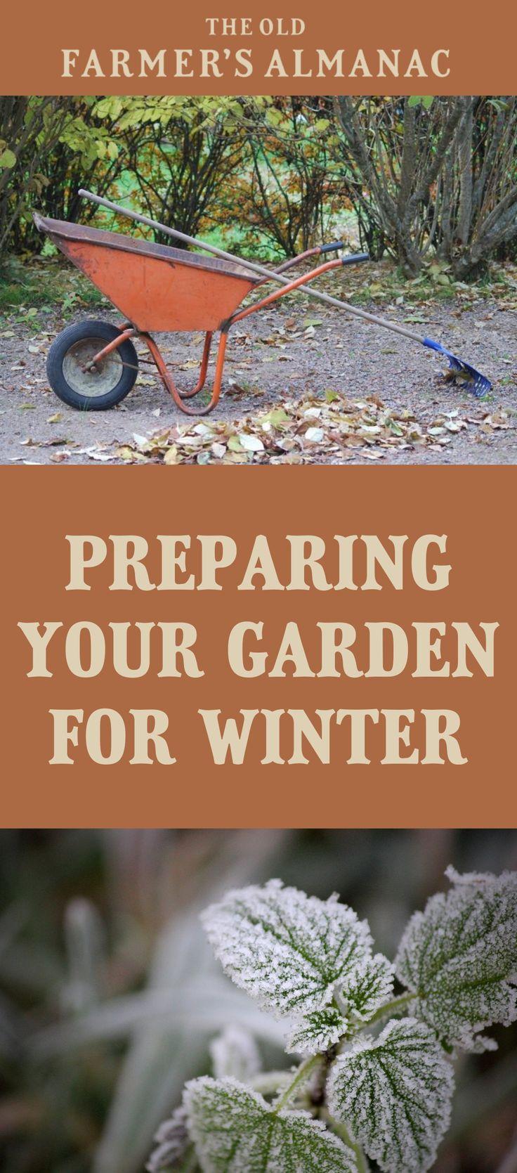 202 best gardening tips images on pinterest old farmers almanac